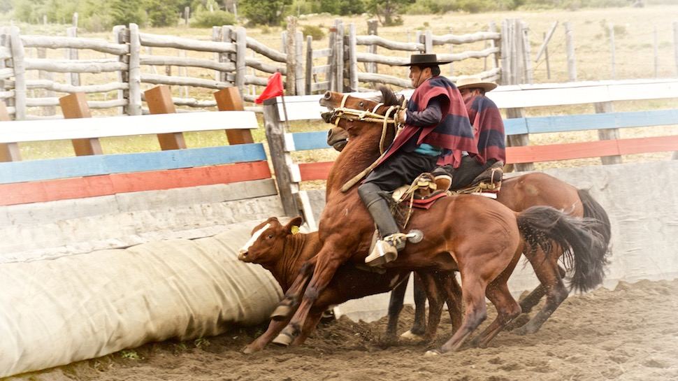 Rodeo_10__MG_6585