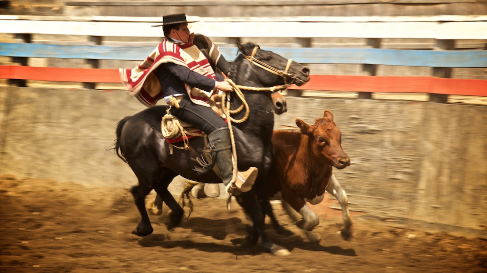 Rodeo_13__MG_6653