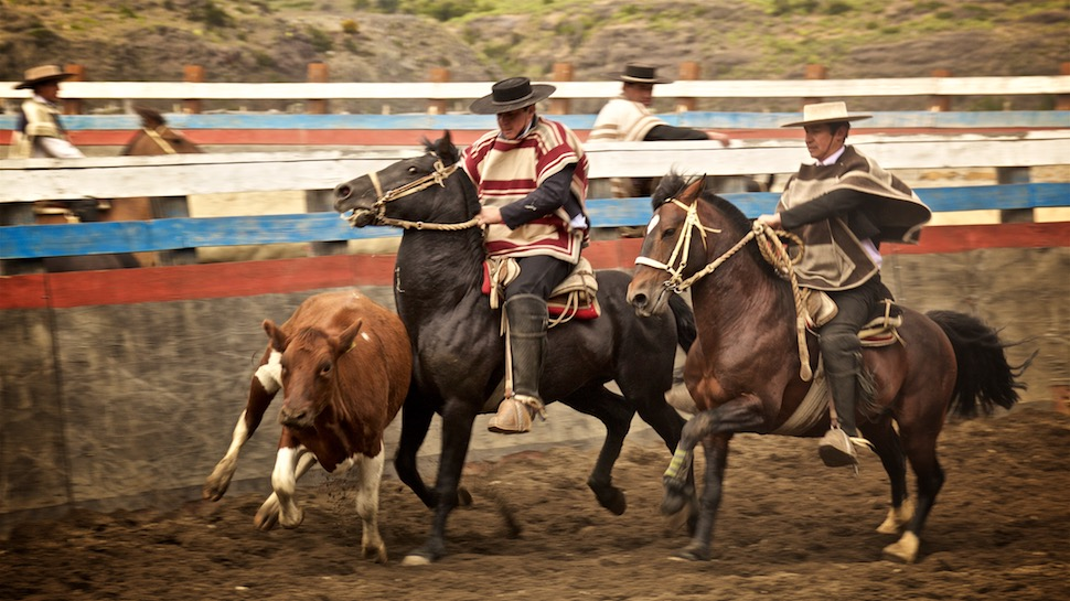 Rodeo_14__MG_6660