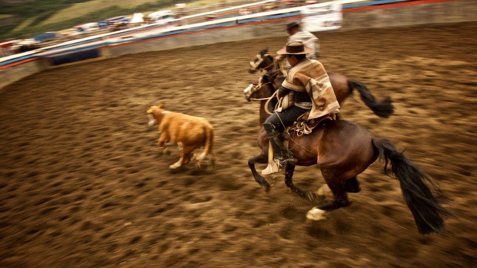Rodeo_19__MG_6733