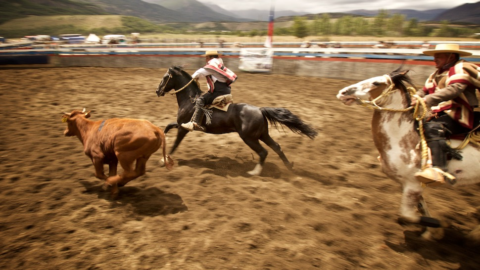 Rodeo_20__MG_6768