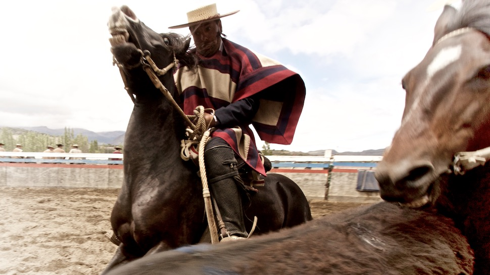 Rodeo_22__MG_6863